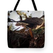 At The Nest Tote Bag