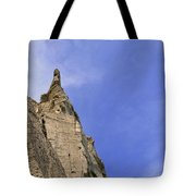 At The Scarborough Bluffs  Tote Bag