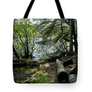 At The Water Edge. Tote Bag
