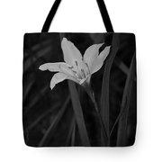 Atamasco Lily II Tote Bag