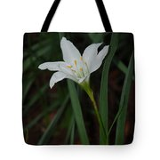 Atamasco Lily Tote Bag