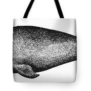 Atlantic Right Whale Tote Bag