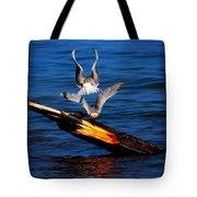 Atop A Tern Tote Bag