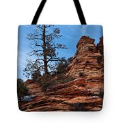 Atop The Layers Tote Bag
