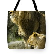 Attention Captured Tote Bag