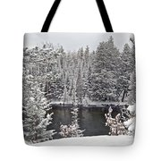 Au Sable River Overlook Tote Bag