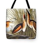 Audubon: Bittern Tote Bag