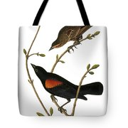 Audubon: Blackbird Tote Bag