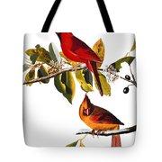 Audubon: Cardinal Tote Bag