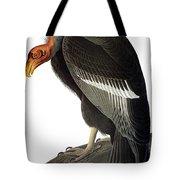 Audubon: Condor Tote Bag