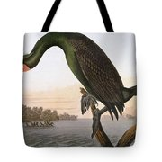 Audubon: Cormorant Tote Bag