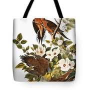 Audubon Dove Tote Bag