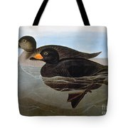 Audubon: Duck, 1827 Tote Bag