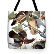 Audubon: Duck Tote Bag
