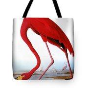 Audubon: Flamingo, 1827 Tote Bag