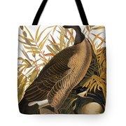 Audubon: Goose Tote Bag