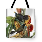 Audubon: Grackle Tote Bag