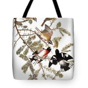 Audubon: Grosbeak Tote Bag