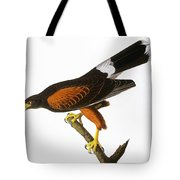 Audubon: Hawk, 1827 Tote Bag