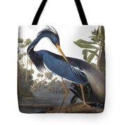 Audubon Heron, 1827 Tote Bag