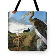 Audubon: Ibis Tote Bag