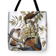 Audubon: Kestrel, 1827 Tote Bag