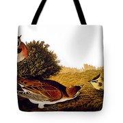 Audubon Lark Tote Bag