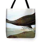 Audubon: Limpkin Tote Bag