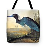 Audubon: Little Blue Heron Tote Bag by Granger