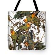 Audubon: Parakeet Tote Bag