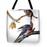 Audubon: Passenger Pigeon Tote Bag