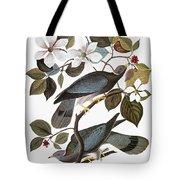 Audubon: Pigeon Tote Bag