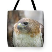 Audubon Quality Tote Bag