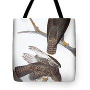 Audubon: Red-tailed Hawk Tote Bag