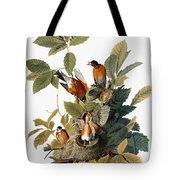 Audubon: Robin Tote Bag