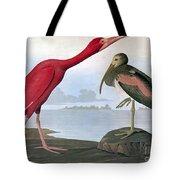 Audubon: Scarlet Ibis Tote Bag