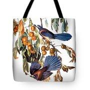 Audubon: Scrub Jay, 1827-38 Tote Bag