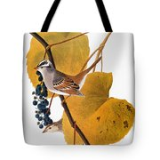 Audubon: Sparrow Tote Bag