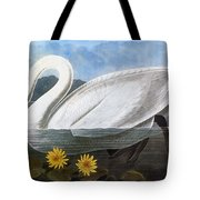 Audubon: Swan, 1827 Tote Bag