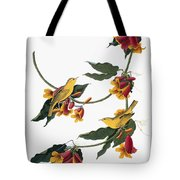 Audubon: Vireo, 1827-38 Tote Bag