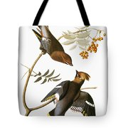 Audubon: Waxwing Tote Bag
