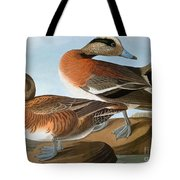 Audubon: Wigeon, 1827-38 Tote Bag