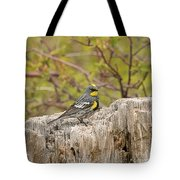 Audubon's Yellow Rumped Warbler Tote Bag