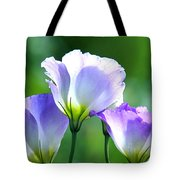 August Echoes Tote Bag