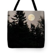 August Full Moon - 1 Tote Bag