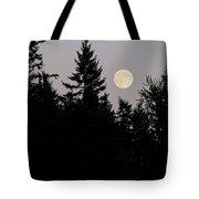 August Full Moon - 2 Tote Bag