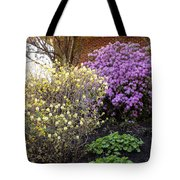 Augusta Hotel Landscaping Tote Bag
