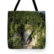 Ausable Chasm Tote Bag