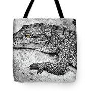Australian Shy Crocodile  Tote Bag