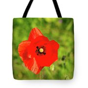 Austrian Poppy Tote Bag